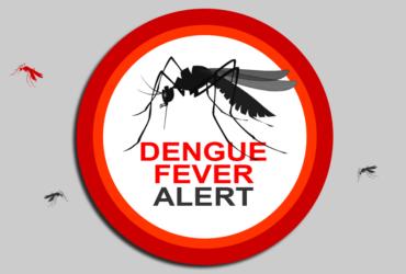 Dengue Fever Alert